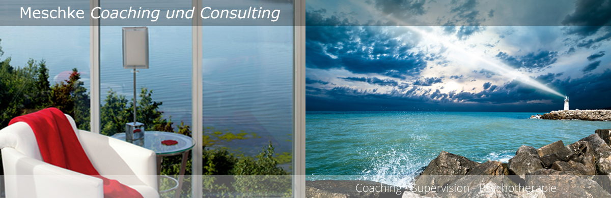 Meschke Coaching & Consulting